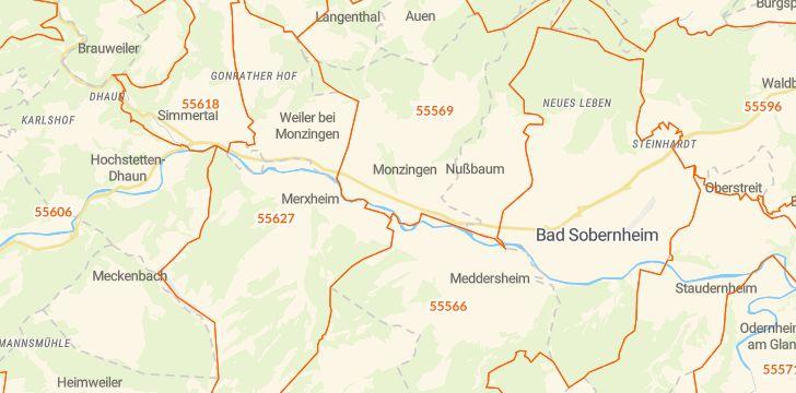Straßenkarte mit Hausnummern Monzingen